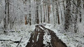 View of dirty road in the winter forest.  stock video