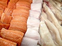 Seafood display case. View at the display case of fish, seafood and marine products in the store Royalty Free Stock Image