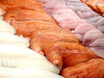 Seafood display case. View at the display case of fish, seafood and marine products in the store Royalty Free Stock Photo