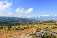 View from Doi Pha Tang,Wiang Kaen district,Chiang Rai,Thailand. A viewpoint on top of a high cliff over the Thai-Laotian border affording a delightful scene for stock photo