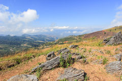 View from Doi Pha Tang,Wiang Kaen district,Chiang Rai,Thailand. A viewpoint on top of a high cliff over the Thai-Laotian border affording a delightful scene for stock photography