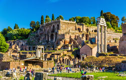 View of Domus Tiberiana in the Roman Forum. Italy Stock Photo