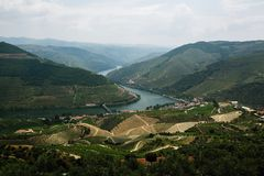 View of Douro valley and vineyards in the hills, Porto. Portugal stock photo