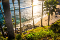 View down a cliff to a beach at Heisler Park at sunset  Royalty Free Stock Images