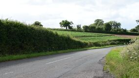 View down a country lane
