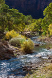 View down the Virgin River Royalty Free Stock Photos