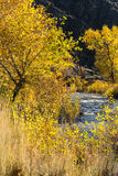 View downriver. During the fall season Royalty Free Stock Photos