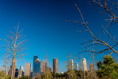 A view of downtown Houston Royalty Free Stock Images
