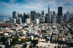 View of the downtown skyline from Coit Tower in San Francisco  Royalty Free Stock Photo