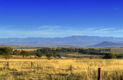 View of the Drakensberg Mountains and Fields - South Africa. A view of the Drakensberg mountains against a clear blue sky and behind farmer's fields Royalty Free Stock Photos