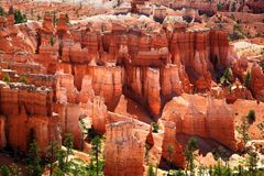 View of the dramatic red landscape Bryce Canyon National Park Royalty Free Stock Photo