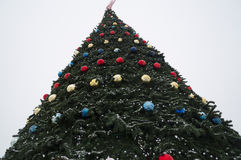 View of dressed up a Christmas tree from the bottom up Stock Photography