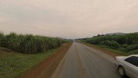 A view of the drive along the countryside, outside Kampala, Uganda, Africa