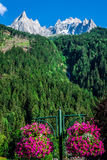 View of Dru Peak in Chamonix, Alps, France Stock Images