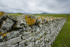 View over a drystone wall in northern scotland Royalty Free Stock Image