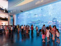 View of Dubai Aquarium inside Dubai Mall Stock Photo