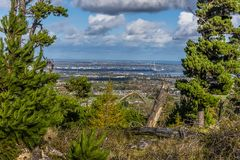 A view of Dublin, Ireland framed by conifers. Viewed from the mountains overlooking the city in early Autumn Stock Image