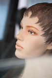 View the dummy in the passenger car Royalty Free Stock Photography