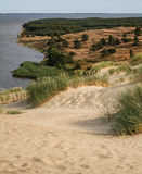 View from the Dune Nagliu, Curonian Spit, Lithuania Stock Image