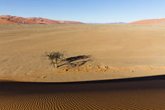 View from the dune 45 in the Namib Desert, Sossusvlei, Namibia. View from the dune 45 in the Namib Desert, Sossusvlei, in the Namib-Naukluft National Park of Stock Image
