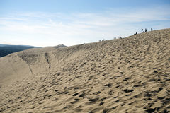 View on Dune of Pilat Stock Photo