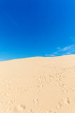 View from Dune of Pyla, Arcachon Bay Royalty Free Stock Photos