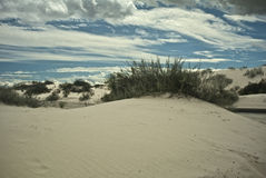 View from the Dunes. This is a view of White Sands National Monument royalty free stock images