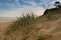 View of the dunes at baltic sea Royalty Free Stock Images