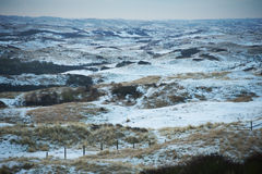 View of the dunes in the Netherlands in winter at the sunset Stock Photography