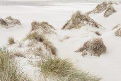 Beach on Romo island - Denmark Stock Images