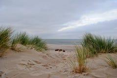 View through dunes to beach. And sea stock photos