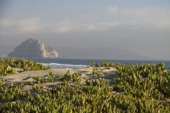 View from dunes to Morro Rock Stock Photo