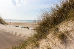 View from dunes to the sea in northern holland stock photography