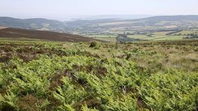 View from Dunkery Hill the highest point on Exmoor to Minehead Somerset England UK stock video footage