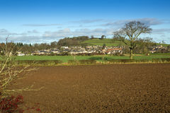 A view of Duns, Berwickshire, scotland Royalty Free Stock Image