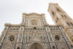 View of the Duomo and Giotto's bell tower. Florence Stock Image