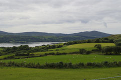 View of Durrus Royalty Free Stock Photos