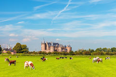 View at the Dutch historic village of Muiden Stock Photo