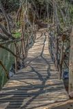 View of ecological bridge, made with recycled materials, in pedestrian route in the Dão river. In Alcafache, Portugal ecology wood wooden wild adventure stock image