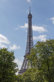 View on Eiffel tower. From garden Royalty Free Stock Photos