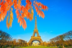 Eiffel Tower, Paris,France. View of the Eiffel Tower and Les Invalides at sunrise with autumn leaves, Paris, France Stock Image