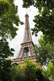 View of Eiffel Tower through summer green trees Royalty Free Stock Photos