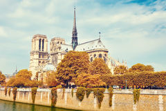 Notre Dame cathedral at autumn Royalty Free Stock Photos