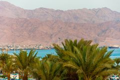 View from Eilat city on Red Sea bay and Aqaba city of Jordan with high sand mountains. View from Eilat city through palm tops on Red Sea bay and Aqaba city of stock photography
