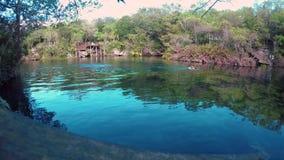 A view of the El Jardin del Eden cenote in the morning with swimmers. A view of the El Jardin del Eden cenote in the morning with swimmers stock video footage