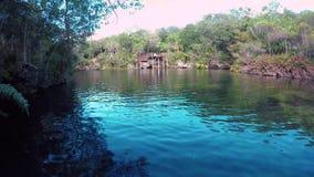 A view of the El Jardin del Eden cenote in the morning with swimmers. A view of the El Jardin del Eden cenote in the morning with swimmers stock video