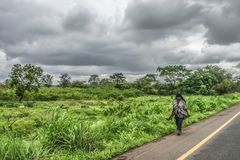 View of elderly woman farmer, walking on the side of the road, typical tropical landscape as background royalty free stock image