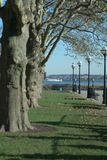 View from Ellis Island. Treeline sidewalk on Ellis Island watching a ferry in the distance royalty free stock photo