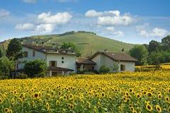 View of emilia romagna Stock Images