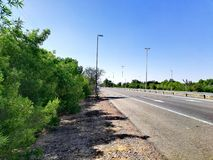 View of empty road with green trees. In summer time Royalty Free Stock Images